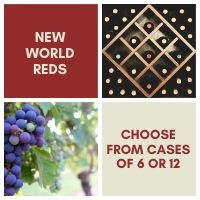 New World - Red Wine Case